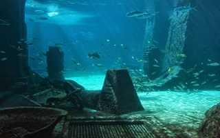 Какие моря входят в бассейн средиземного моря