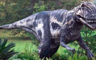 К чему снится динозавр в бассейне