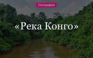 Почему в бассейне реки конго